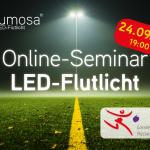 LED Flutlicht Seminar Online